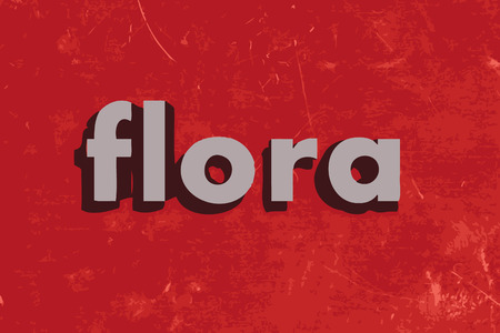 flora: flora word on red concrete wall
