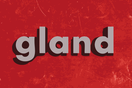 gland: gland word on red concrete wall