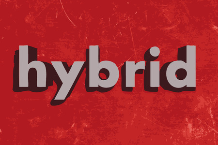 hybrid: hybrid vector word on red concrete wall