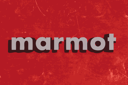 marmot: marmot vector word on red concrete wall Illustration
