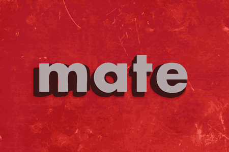 mate: mate vector word on red concrete wall