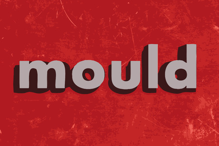 mould: mould vector word on red concrete wall