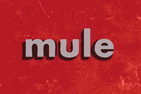 mule: mule vector word on red concrete wall