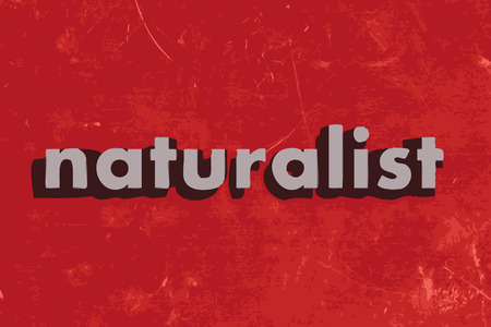 naturalist vector word on red concrete wall Illustration