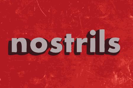 nostrils: nostrils vector word on red concrete wall Illustration