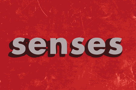 senses: senses vector word on red concrete wall