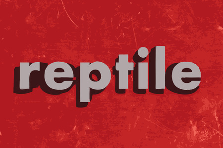 reptile: reptile vector word on red concrete wall