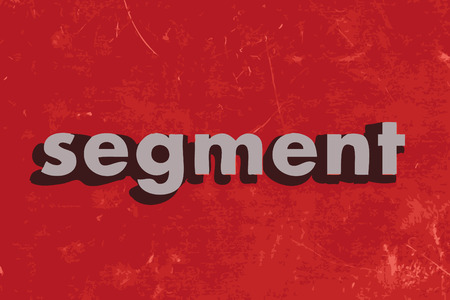 segment vector word on red concrete wall Illustration