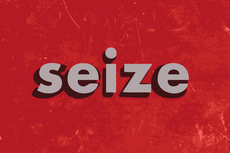 to seize: seize vector word on red concrete wall