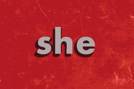 she: she vector word on red concrete wall Illustration