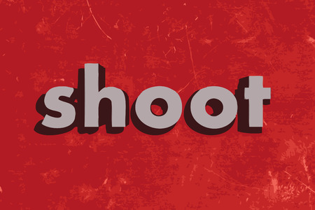shoot vector word on red concrete wall