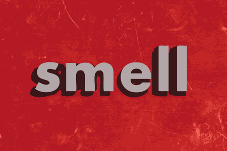 smell: smell vector word on red concrete wall Illustration