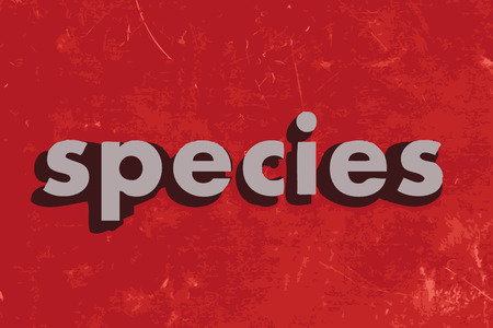 species: species vector word on red concrete wall
