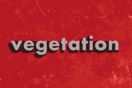 vegetation: vegetation vector word on red concrete wall