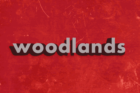 woodlands: woodlands vector word on red concrete wall