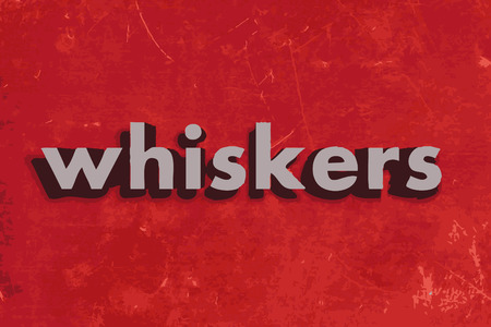 whiskers: whiskers vector word on red concrete wall