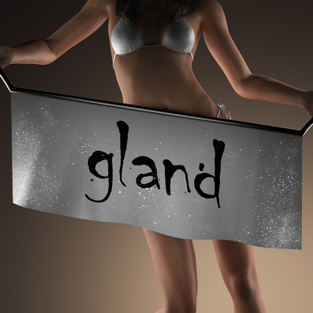 gland: gland word on banner and bikiny woman