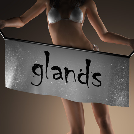 glands: glands word on banner and bikiny woman