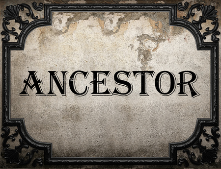 ancestor: ancestor word on concrette wall Stock Photo