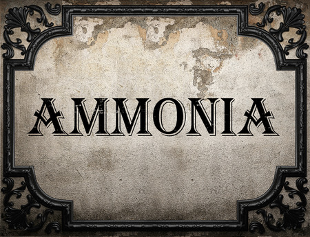 amoniaco: palabra de amoníaco en la pared concrette