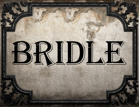 bridle: bridle word on concrette wall
