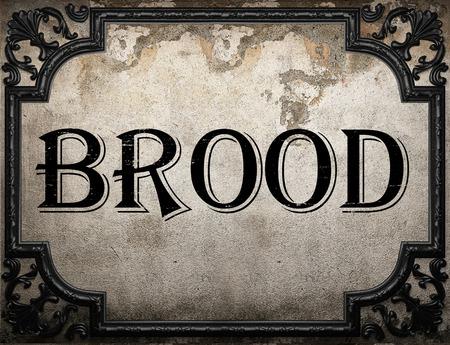 brood: brood word on concrette wall Stock Photo