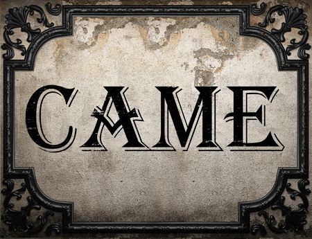 came: came word on concrette wall