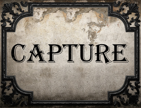 capture: capture word on concrette wall Stock Photo
