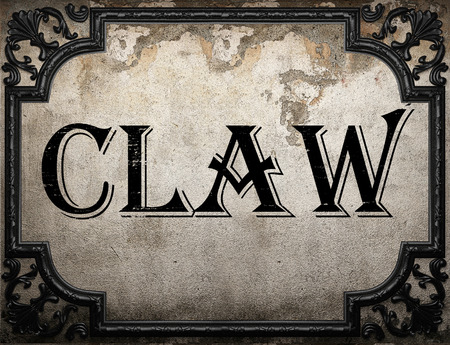 claw: claw word on concrette wall Stock Photo