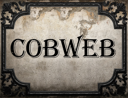 cobweb word on concrette wall Stock Photo