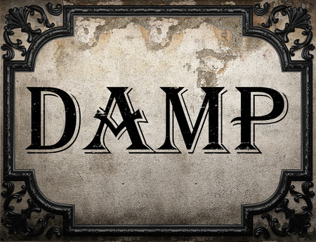 damp: damp word on concrette wall Stock Photo