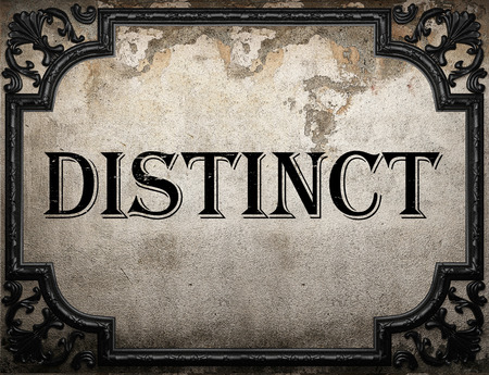 distinct: distinct word on concrette wall