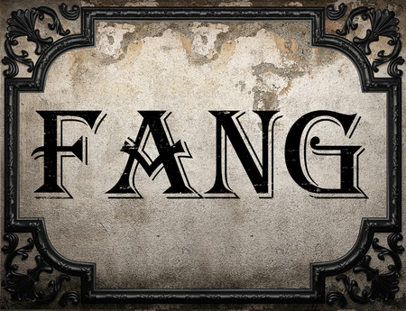 fang: fang word on concrette wall Stock Photo