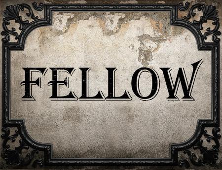 fellow: fellow word on concrette wall