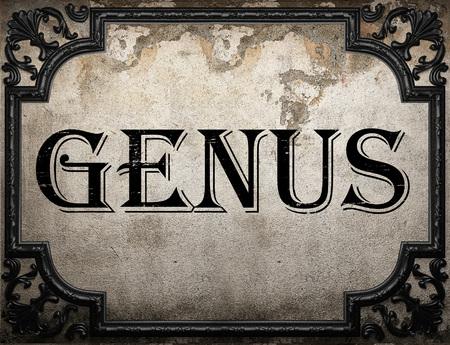 genus: genus word on concrette wall