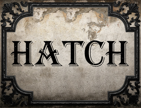 the hatch: hatch word on concrette wall