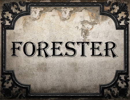forester: forester word on concrette wall