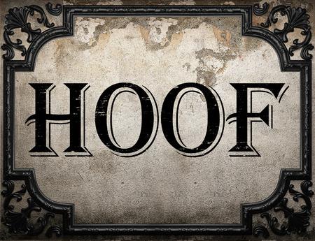 hoof: hoof word on concrette wall Stock Photo