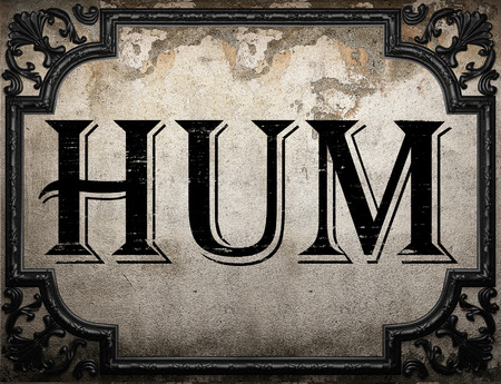 hum: hum word on concrette wall