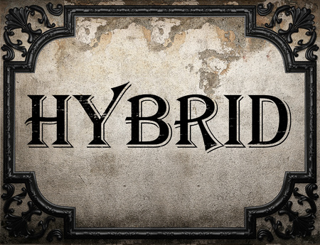 hybrid word on concrette wall