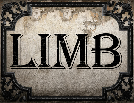 limb: limb word on concrette wall Stock Photo