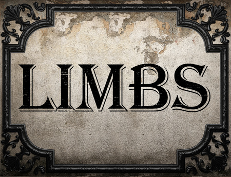 limbs: limbs word on concrette wall