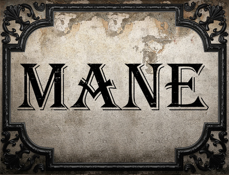 mane: mane word on concrette wall