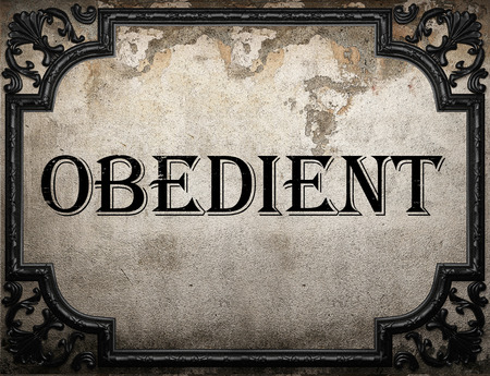 obedient: obedient word on concrette wall