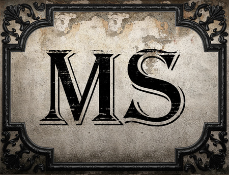 ms: ms word on concrette wall