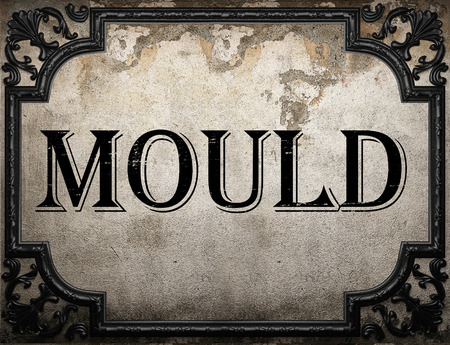 plaster mould: mould word on concrette wall