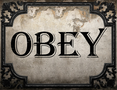 to obey: obey word on concrette wall Stock Photo
