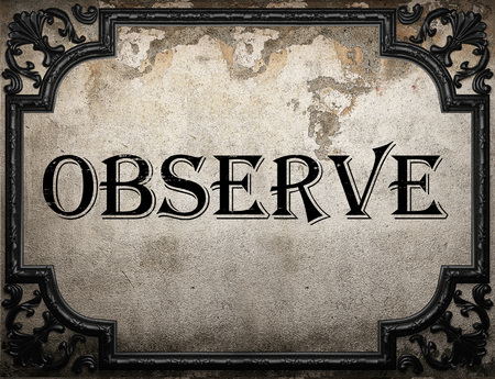 observe: observe word on concrette wall