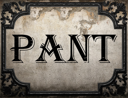 pant: pant word on concrette wall Stock Photo