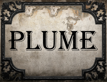 plume: plume word on concrette wall